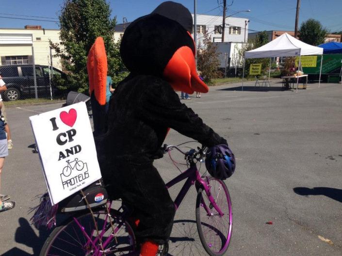 bike bird